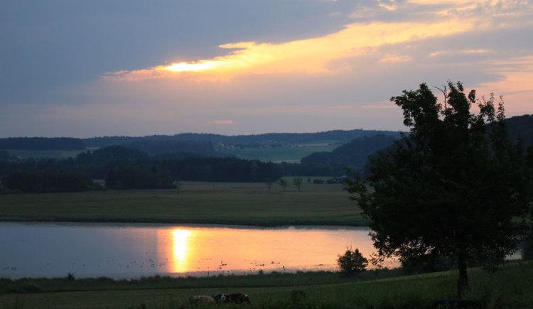 Abendstimmung mit Seeleitensee, Wiesen und einem Baum. (© sandra reindl)