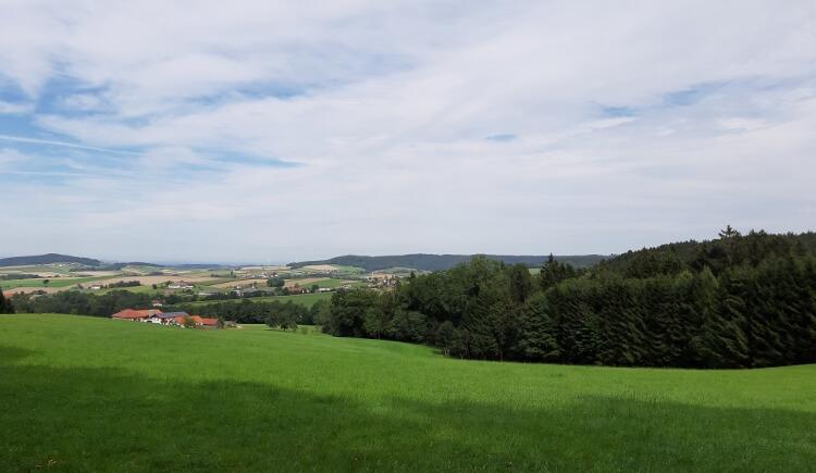 BWA Pramet_Hartjesweg_(c)Innviertel Tourismus-Zotscher (4) (750x563) (© Innviertel Tourismus-Zotscher)