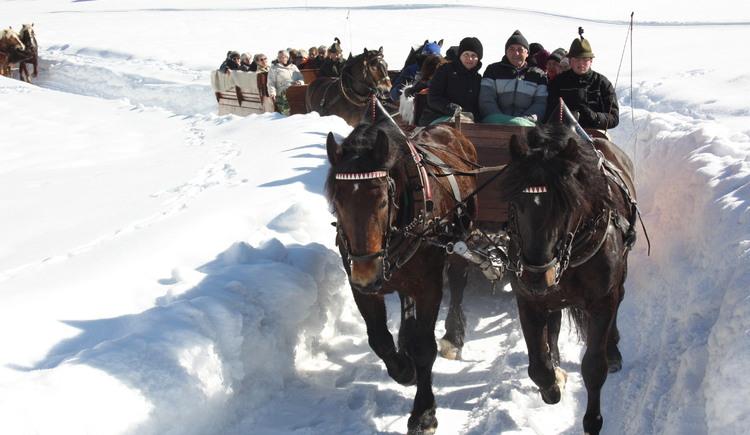 Das tief verschneite Gosautal erkundet man am besten mit zwei PS. (© Grill Elisabeth)