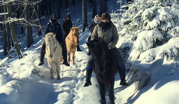 Reiten-im-Schnee