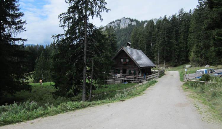 Vom Berghotel Predigstuhl erreicht man nach ca. 30 Minuten die Roßmoosalm die man Richtung Hütteneck überquert.. (© Ferienregion Dachstein Salzkammergut / Michaela Schilcher)