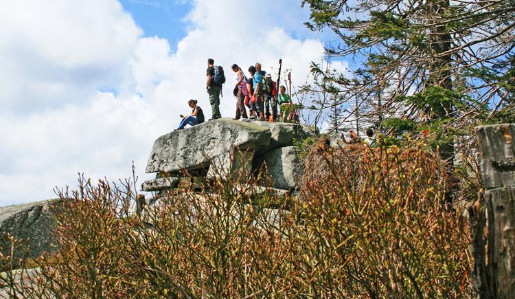 Eine Gruppe Wanderer steht auf einem Aussichtsfelsen. (© Tourismusverband Ferienregion Böhmerwald)