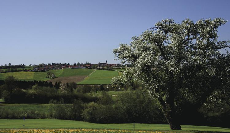 aussicht-kellberrg-von-birnbaum-2012-04-28-diverse-landschaft-020