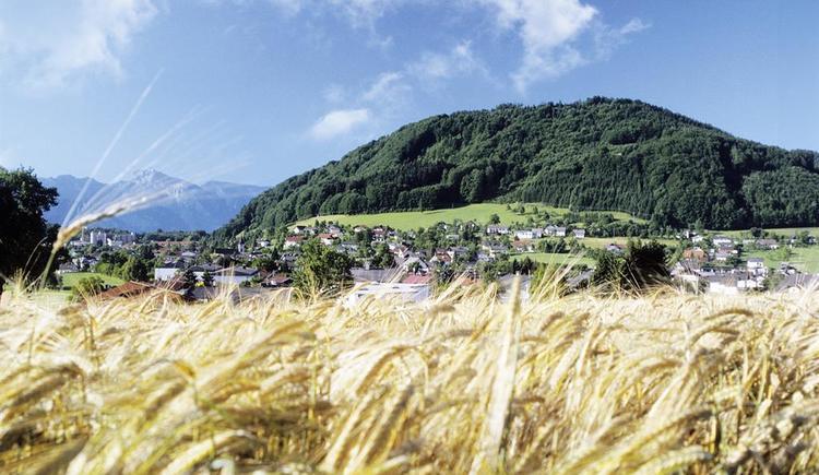 Panorama Pinsdorf (© MTV Ferienregion)