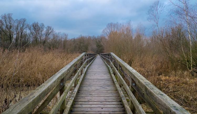 Europareservat Unterer Inn - Brücke  Stift Reichersberg (© thomashawlikme.com)
