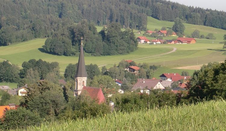 Blick von der Wiese auf die Landschaft, den Ort Oberhofen. (© Tourismusverband MondSeeLand)