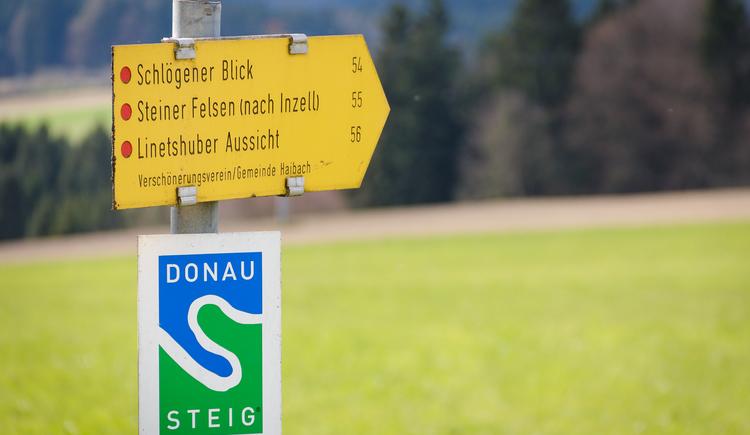 Wandern in Haibach ob der Donau (© Johannes Kaindlstorfer)