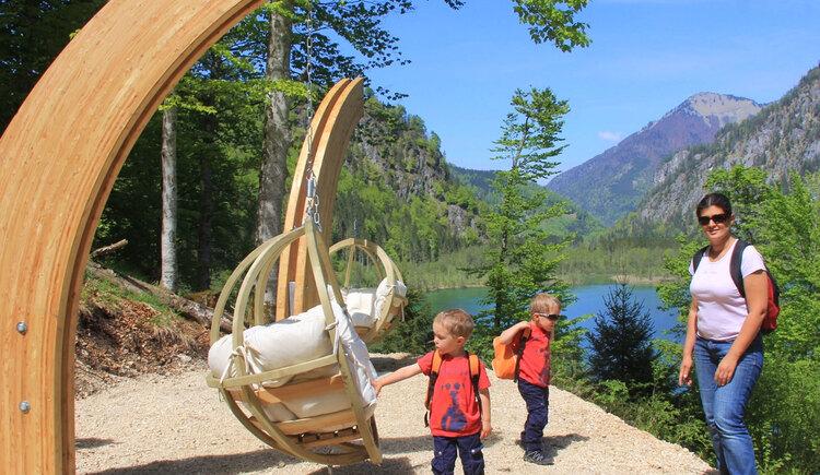 Waldness für die ganze Familie - Naturgenuss am Almsee, Genuss am Almfluss