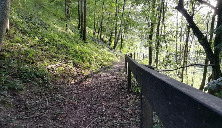Schlosswanderweg in Kirchdorf am Inn in der Bewegungs-Arena INNVIERTEL. (© Innviertel-Tourismus)