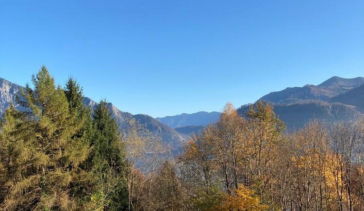 Kastanienwald Aussicht. (© TVB Attersee-Attergau)