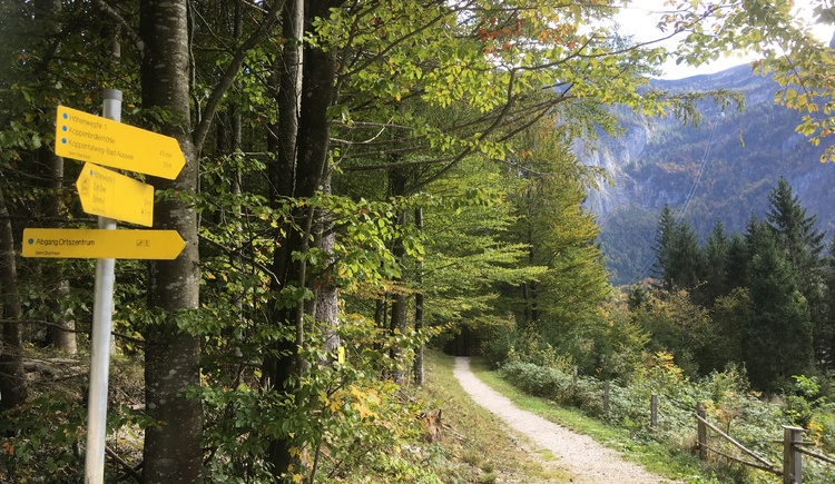 Durch die gute Beschilderung der Wanderwege finden wir uns gut zurecht. (© Manuela Elmer)