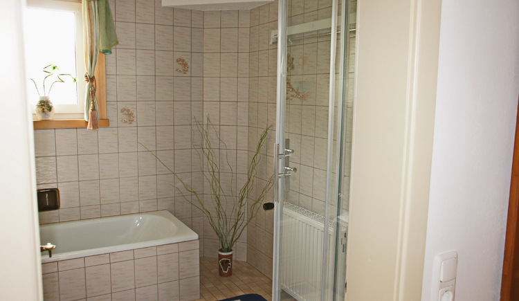 The holiday flat Gosaukamm is equiped with a bright and inviting bathroom.