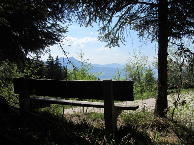 Aussichtspunkt (© Tourismusverband MondSeeLand)