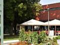 Gustav Klimt Centre