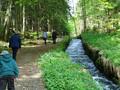 16,5 km: Steilstufenweg - Große Runde