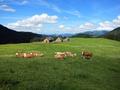 Kalkalpen Trail stage 4