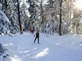 9,6 km: Hirschlacke-Loipe
