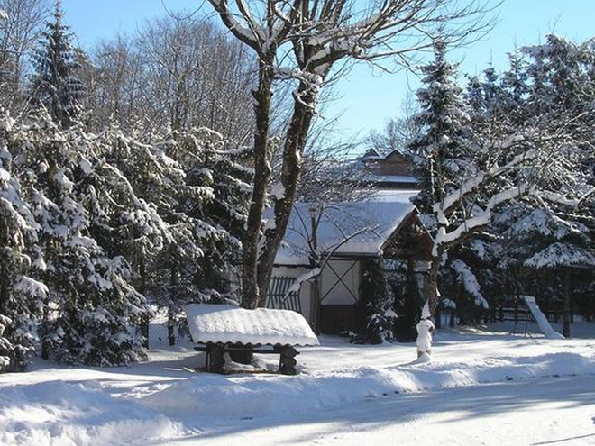 Winter - Wander - Aktiv - Tage