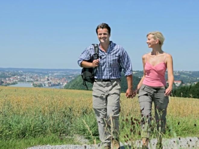 Donausteig (© © WDG Tourismus GmbH)