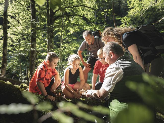 Wildnis spüren - Am Weg zur Waldwildnis