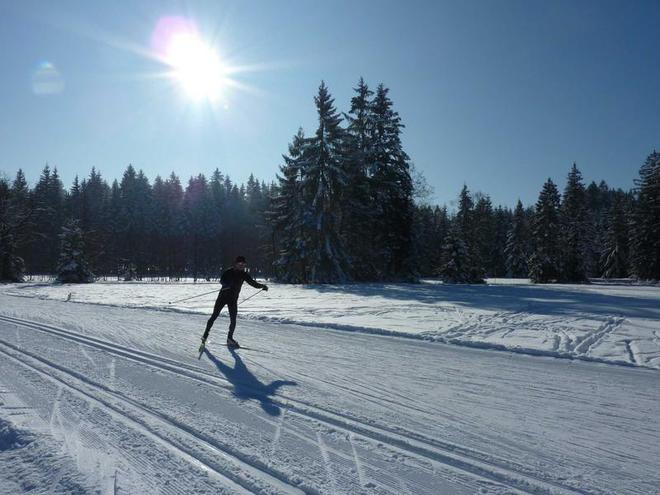 Cross country ski run  - Thalgau