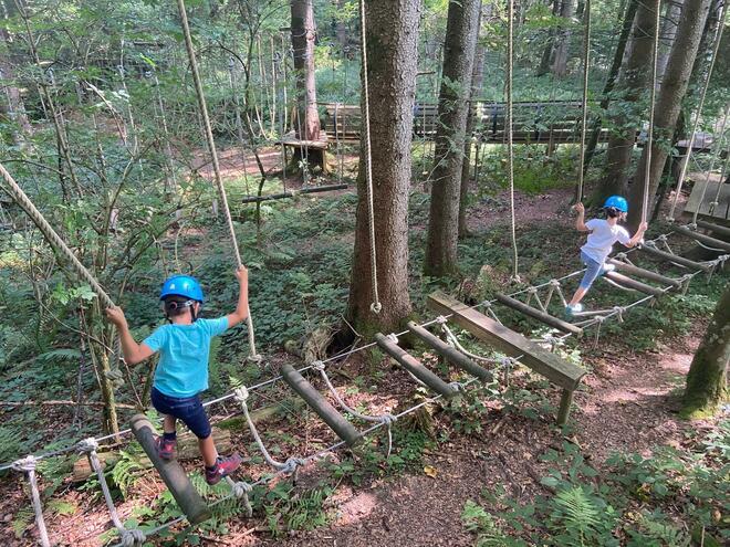 Kletterspass für Groß & Klein (© Waldkletterweg Faistenau, Gerhard Mösenbichler)