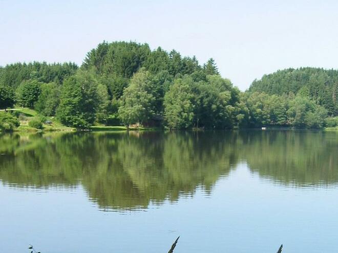 Angeln in den Gewässern des Fischreivereines (Klaffer am Hochficht)