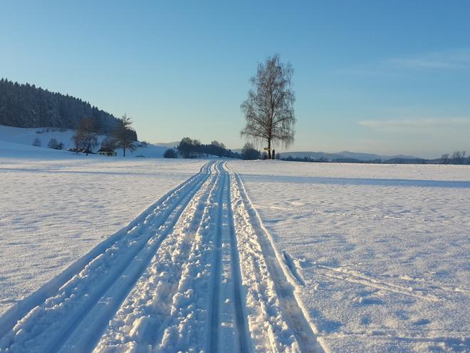 Langlauf-Loipen in Hirschbach