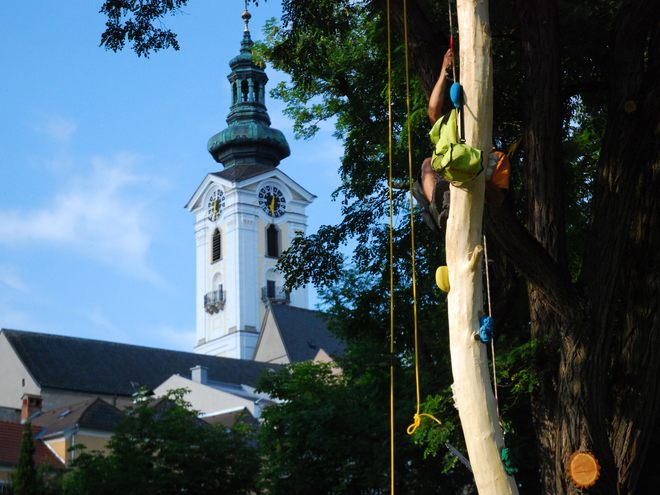 Höhenflug - Erlebnisparcours (Hoehenflug adventure course) in the old part of Freistadt