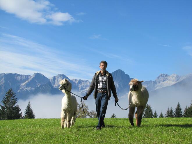 Besuch bei der Lama Zucht