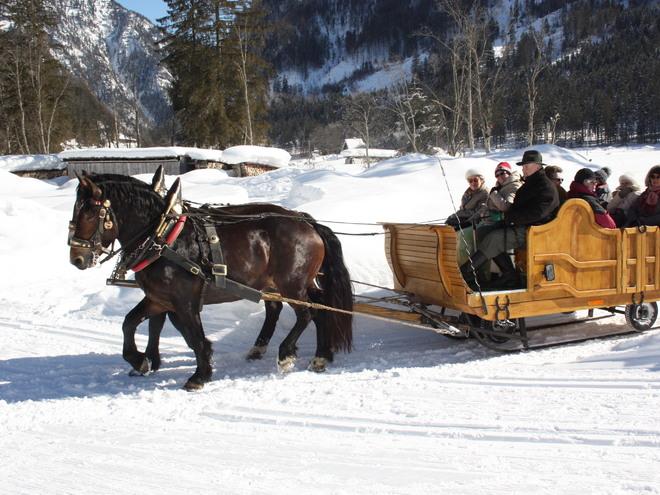 Pferdeschlittenfahrt in Gosau