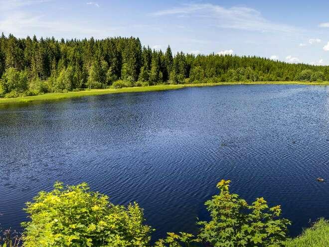 Rubener Teich beim Tannermoor
