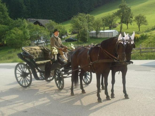 Horse-drawn carriage rides Ausweger
