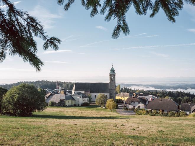 Pfarrwaldweg