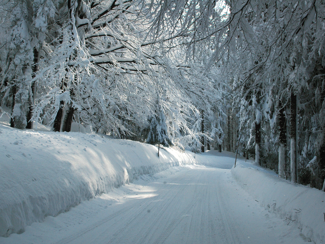 Winterwanderweg Pfarrwald