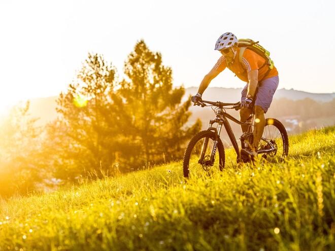Hochwald-Mountainbike Strecke