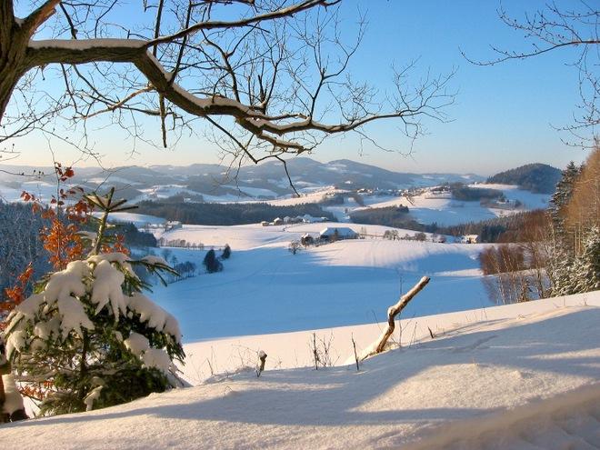 Winterwanderweg: Glashüttenweg