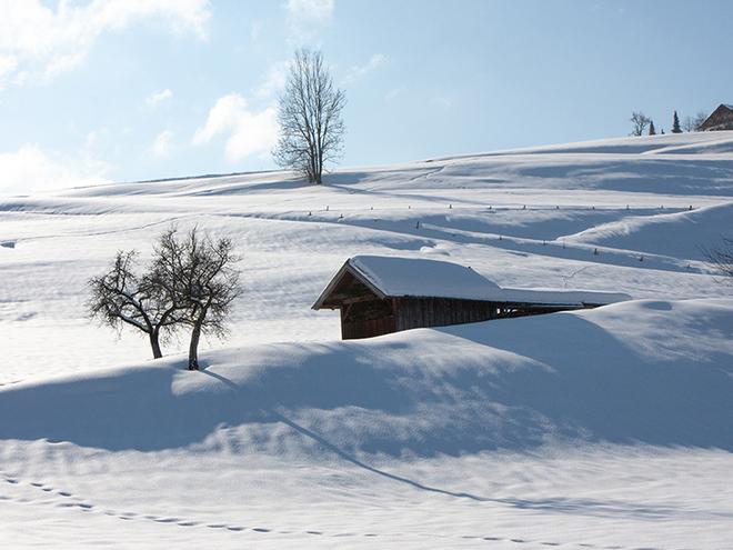 Winterspaziergang durchs Helenental auf den Gaisberg