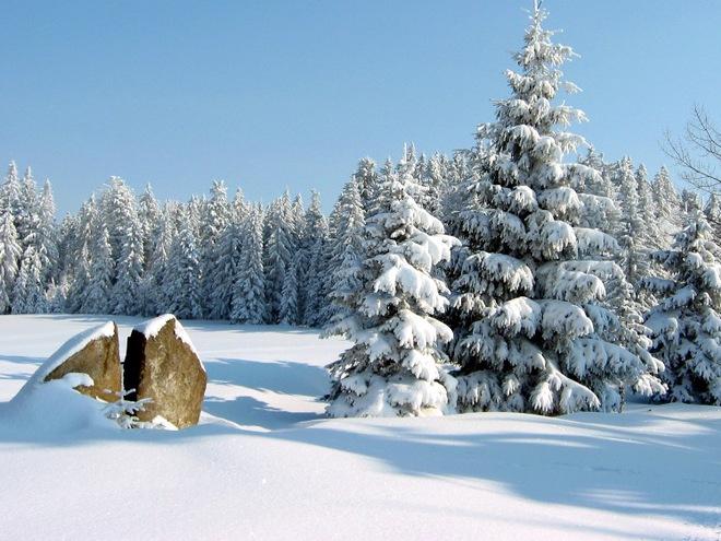 Winterwanderweg: Oberhaagerweg