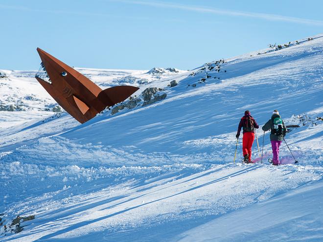 Schneeschuhtrail Dachstein-Hai