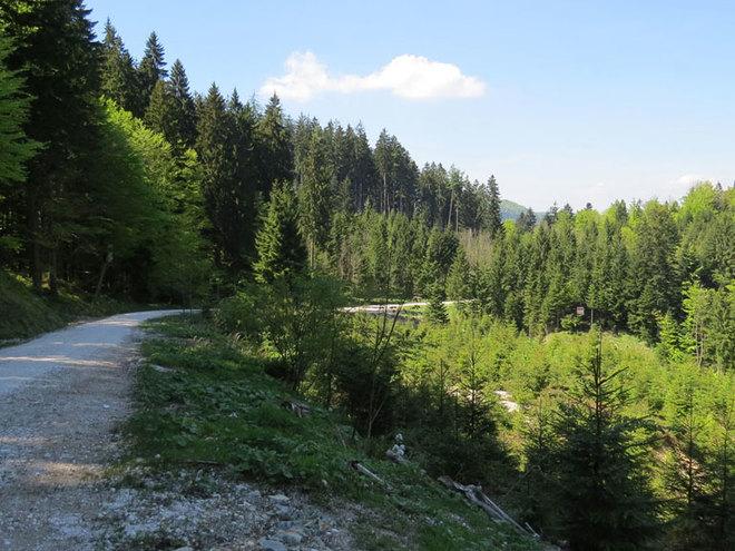 Mountainbike-Tour Hochplett mittel
