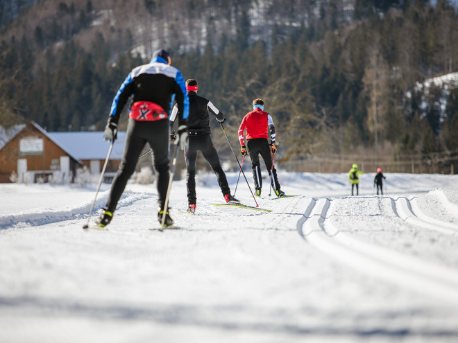 Competition trail red - biathlon and cross-country arena Pyhrn-Priel - Rosenau am Hengstpass