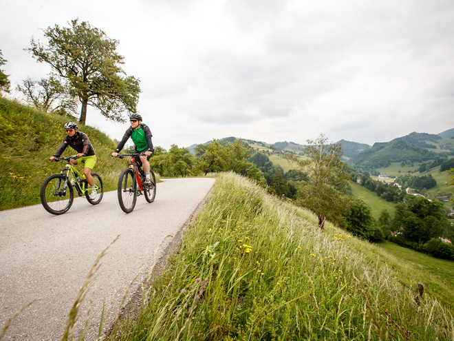 Trans Nationalpark Stage 02 - Over pastures in Styria