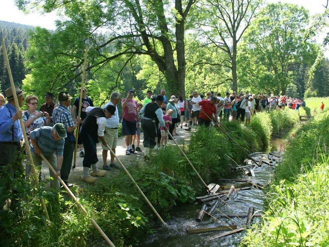 Schauschwemmen am Schwemmkanal im Schrollenbach