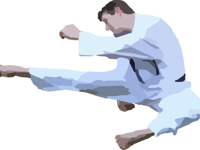 Österreichische Shotokan- Karate Meisterschaft