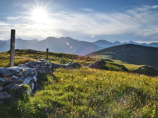 Tettensjoch: High above the Tux valley