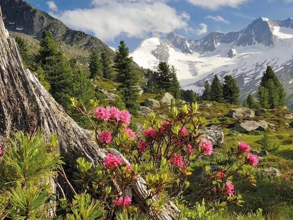 Vernissage: Through the Zillertal on high ways - from Paul Sürth