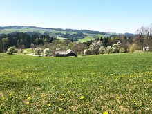 4,4 km: Ahorner Rundweg