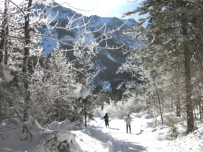 Durch die Winterlandschaft gleiten