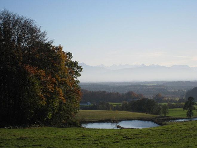 Eggelsberg/Ibmer Moor